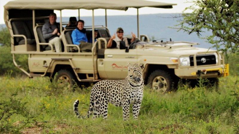 17 unforgettable African safaris